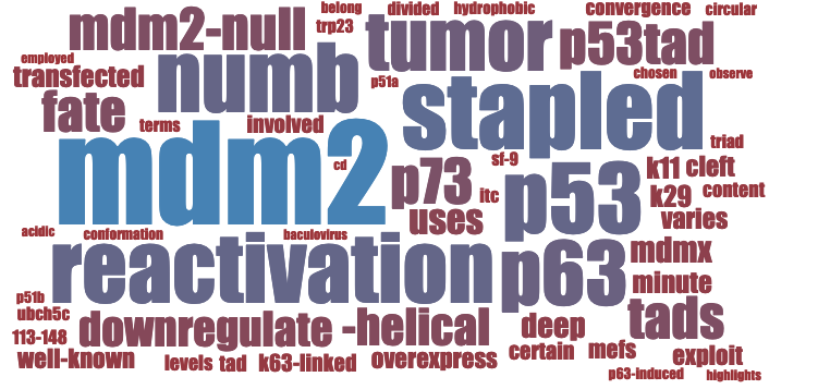 Classified - Word cloud example